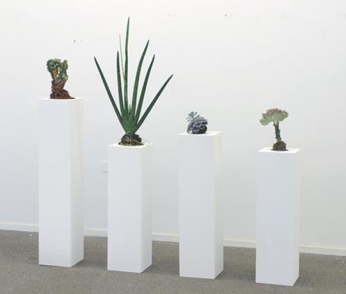 Simon Kentgens - Plant B